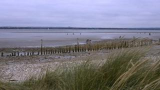 Sand dunes at West Wittering