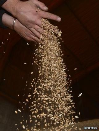 Wheat harvest (Image: Reuters)