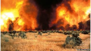 Intense grass fire