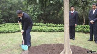 "In this handout photo released by TaKungPao.com on December 10, 2012, China""s Vice President Xi Jinping (L) plants a tree on Lianhua hill in Shenzhen, Guangdong province, December 8, 2012"