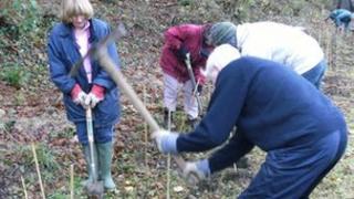 Volunteers in Gloucestershire help plant trees