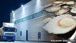 Picture from Macduff Shellfish website