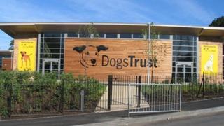 Dogs Trust Uddingston Centre