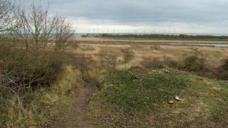 Seacroft Marsh