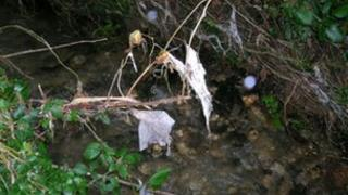Toilet paper and raw sewage has polluted the stream since Christmas