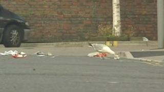 A gull picks at littler on a street in Bath
