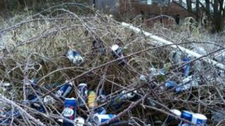 Empty beer cans in Quarry Bank