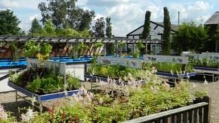 Heritage Farm Nurseries