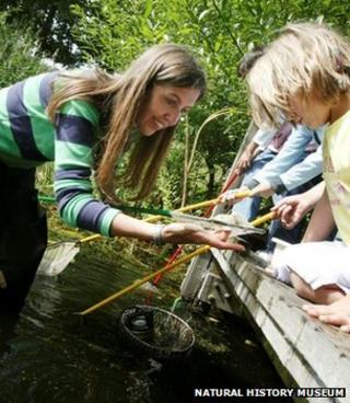 Children taking part in a survey of a pond (Image: Natural History Museum)