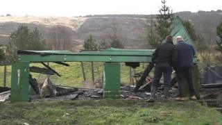 Pigeon loft destroyed by fire in Blaencwm