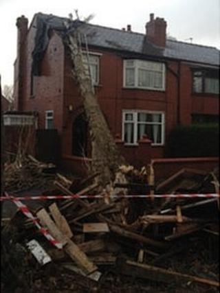 A tree blown into a house in Wigan