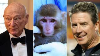 Ed Koch, the alleged Iranian space monkey and Dan Marino