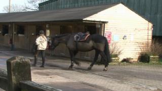 Cardiff Riding School