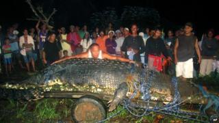 Lolong the crocodile