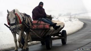 A man rides on a horse and cart