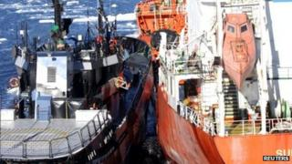 The Sea Shepherd vessel, Bob Barker (Left), comes to collision distance from Japanese fuel tanker Sun Laurel in the Antarctica