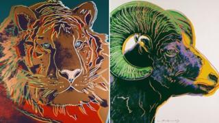 Siberian tiger and bighorn ram