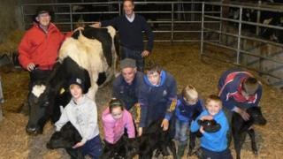 The Kirby family and Dan Ryan (in red) with the cow and calves