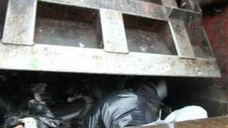 Rear view of a bin lorry