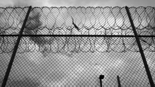 Barbed-wired fence