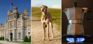 Stately home, whippet, stovetop coffee