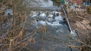 Weir and mill at Neen Sollars