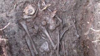 Crannog skeleton
