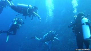 Students swimming underwater