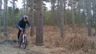 Swinley Forest mountain biking