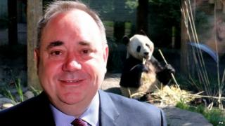 Alex Salmond pictured with one of the pandas