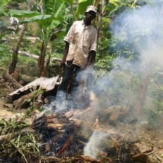 A charcoal burner in Jamaica