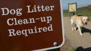 """Sign saying """"Dog litter clean-up required"""" with a dog walking past"""