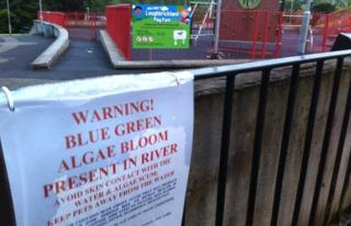 Toxic algae warning sign close to play park