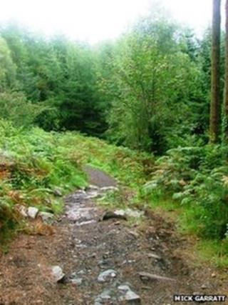 Kirroughtree trail