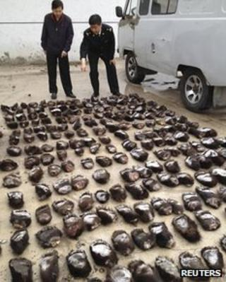 China border officials seize 213 bear paws