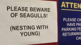One of the warning signs on the top floor of a high-rise car park in Belfast's High Street