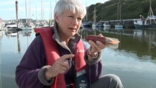 Jackie Hall from the Manx Basking Shark Watch