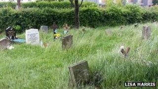 South Stoneham Cemetery on 11 June 2013 -taken by Lisa Harris
