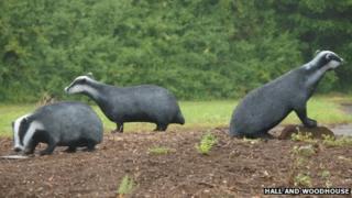 Chicken wire badgers
