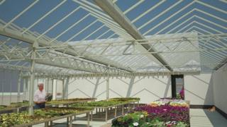 Boultham Park greenhouse