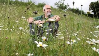 Jim Mathison, Green Spaces manager, in the meadow at Stroud Cemetery.
