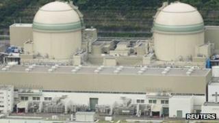 File photo: Kansai Electric Power Company's Takahama nuclear power plant in Takahama town, Fukui prefecture, 27 June 2013