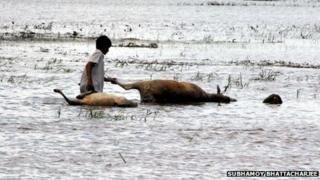 Assam floods/2013