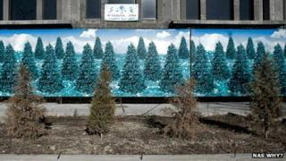Withered firs in front of a My Favourite Tree exhibit. Photo: Nas Why? art group, Uzbekistan, via neweurasia.net
