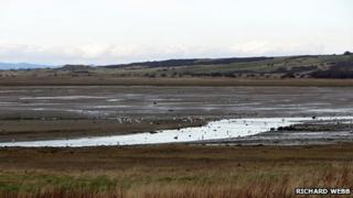 Shore near Aberlady