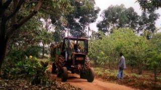 tractor on farm in Tanzania