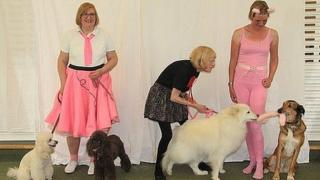 Dog Dancing School