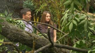 Wayne and Sharon Kimberlin near the fallen tree
