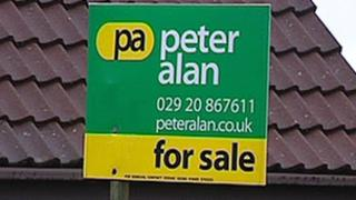 Peter Alan for sale sign