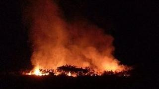 Furze Fire at Gorey